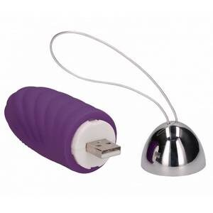 Oeuf Rechargeable Ethan Violet